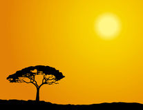 African tree. Lone tree silhouette under African sunny sky vector illustration
