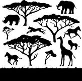 African trees and animals, set of silhouettes Stock Photos