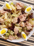 African tuna salad with tomatos and green peppers Stock Images
