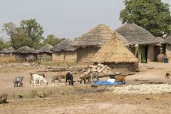 African village in ghana stock images