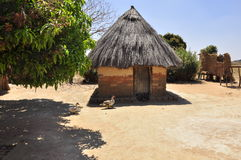 African village in Zambia. Hut animals and trees Stock Images