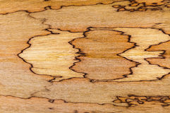 African walnut natural wood texture Royalty Free Stock Photo
