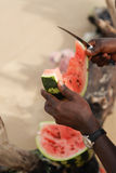 African watermelon Stock Images