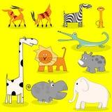 African wild animals Stock Image