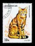 African Wildcat (Felis silvestris lybica), serie, circa 1994. MOSCOW, RUSSIA - NOVEMBER 26, 2017: A stamp printed in Azerbaijan shows African Wildcat (Felis Royalty Free Stock Photos