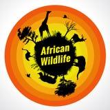 African wildlife. (6 animal is Giraffe, deer, elephant, rhino, ostriche and birds Royalty Free Stock Image
