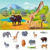 African Wildlife Concept Stock Photos