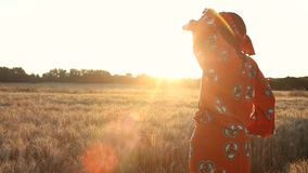 African woman farmer in traditional clothes standing in a field of crops at sunset or sunrise. African woman in traditional clothes standing looking in a field stock video