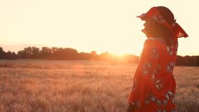 African woman farmer in traditional clothes standing in a field of crops, wheat or barley, in Africa at sunset or sunrise. HD Video clip of African woman farmer stock video footage