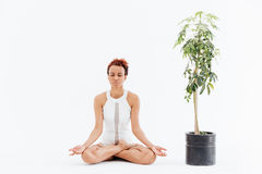 African woman meditating in lotus pose near tree in pot Royalty Free Stock Photos
