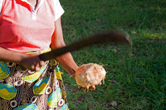 African woman opens coconut with a machete. Royalty Free Stock Photography