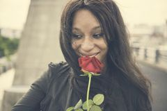 African Woman Rose Flower Love Passion Valentine Concept Stock Photos
