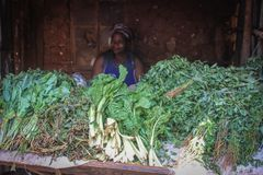 African woman selling greens on the counter in one of the poorest cities in Africa royalty free stock image