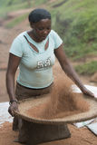 African woman sift chaff of the millet royalty free stock image
