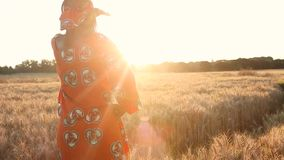 African Woman in Traditional Clothes Standing in Farm Field at Sunset or Sunrise. HD Video clip of African woman farmer in traditional clothes standing in a stock footage