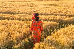 African woman in traditional clothes standing in a field of crop. African woman in traditional clothes standing in a field of barley or wheat crops at sunset or Stock Photo