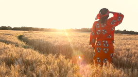 African woman in traditional clothes standing in a field of crops at sunset or sunrise. HD Video clip of African woman in traditional clothes standing in a field stock footage