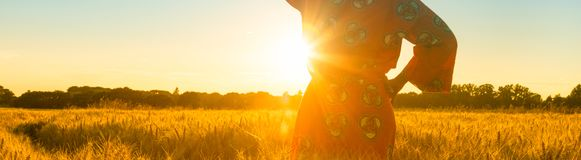 African woman in traditional clothes standing in a field of crops at sunset or sunrise stock photos
