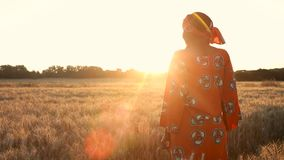 African woman farmer in traditional clothes standing in a field of crops at sunset or sunrise. African woman in traditional clothes standing looking in a field stock video footage