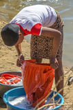 Woman washing clothes Royalty Free Stock Photo