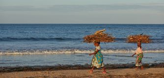 African women carrying firewood. Two African women carry heavy bundles of firewood along the beach of Malindi in Kenya Stock Image