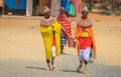 African women from the Samburu tribe akin to the Masai tribe in national jewelery royalty free stock image
