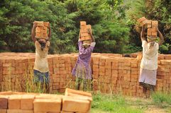 African women at work carrying bricks. On the head, Madagascar, Africa Stock Photos