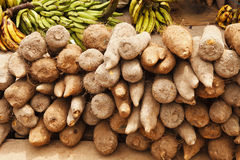 African Yams. Yams and plantains photographed at an outdoor market in Accra Ghana Royalty Free Stock Images