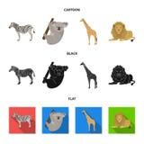 African zebra, animal koala, giraffe, wild predator, lion. Wild animals set collection icons in cartoon,black,flat style. African zebra,animal koala, giraffe Royalty Free Stock Images