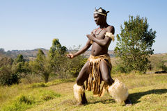 African zulu man. South African zulu tribe man dressed in traditional clothes dancing on wild mountain stock photography