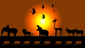 Africans motifs. Picture of animals of Africa on sunset stock illustration