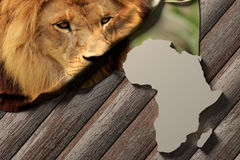 Afrika Royalty Free Stock Images