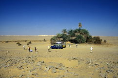 AFRIKA EGYPTEN SAHARA FARAFRA VIT ÖKEN Royaltyfri Fotografi