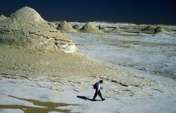AFRIKA EGYPTEN SAHARA FARAFRA VIT ÖKEN Arkivbilder
