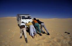 AFRIKA EGYPTEN SAHARA SIWA ÖKEN Arkivbild