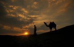 AFRIKA EGYPTEN SAHARA SIWA ÖKEN Royaltyfria Bilder
