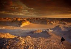 AFRIKA EGYPTEN SAHARA VIT ÖKEN Arkivbild