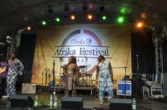 Afrika Festival, Graz 2013 Royalty Free Stock Photos