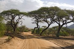Afrika-Landschaft 005 stockfotos