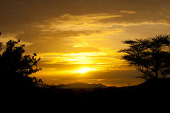 Afrika, Süd-Äthiopien, Nationalpark Mago Lizenzfreies Stockbild