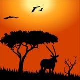Afrika-Safari - Schattenbilder von wilden Tieren stock abbildung