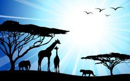 Afrika/safari - silhouetten Stock Afbeelding