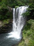 Afrika Safari Waterfall royaltyfri bild