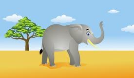 Afrika-Savanne Lizenzfreies Stockfoto