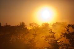 Afrika-Sonnenuntergang Lizenzfreie Stockfotos