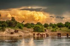 Afrika storm Tid Arkivfoton