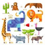 Afrika-Tiere und Pflanzen lizenzfreie abbildung