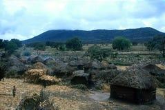 Afrika traditionellt byhus Arkivfoto
