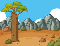 Afrika-Wüste mit einem großen Baum auf dem Gebiet lizenzfreie abbildung