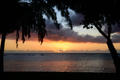 Afrika, zonsondergang in Mont Choisy in Mauritius Royalty-vrije Stock Foto's